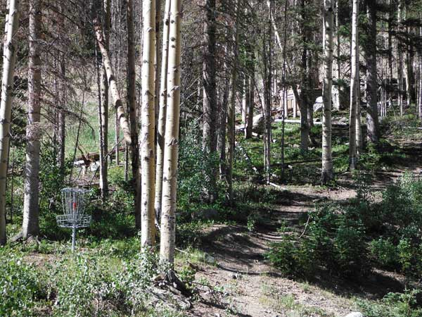disc_golf_tsv_01