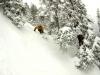 matt gorman skiing zdard skychute